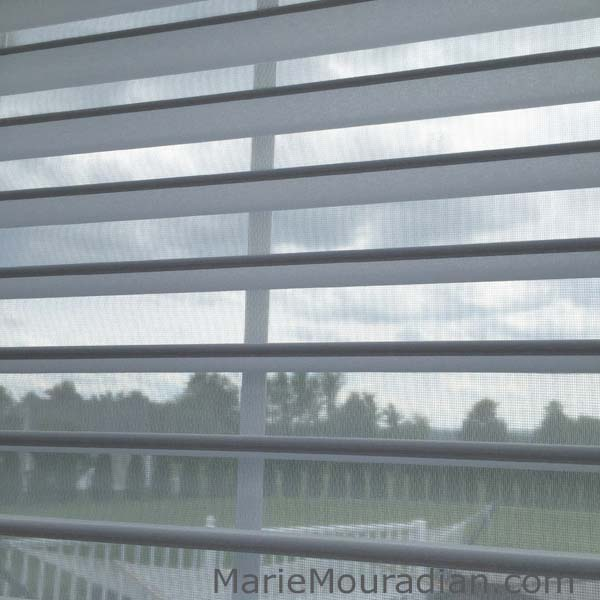 Hunter Douglas Silhouette Window Shadings. No cords or tapes to obstruct outside views. Available to the Worcester, MA area through Window Designs Etc. by Marie Mouradian